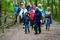 Formby Pinewoods Walks - 21st May